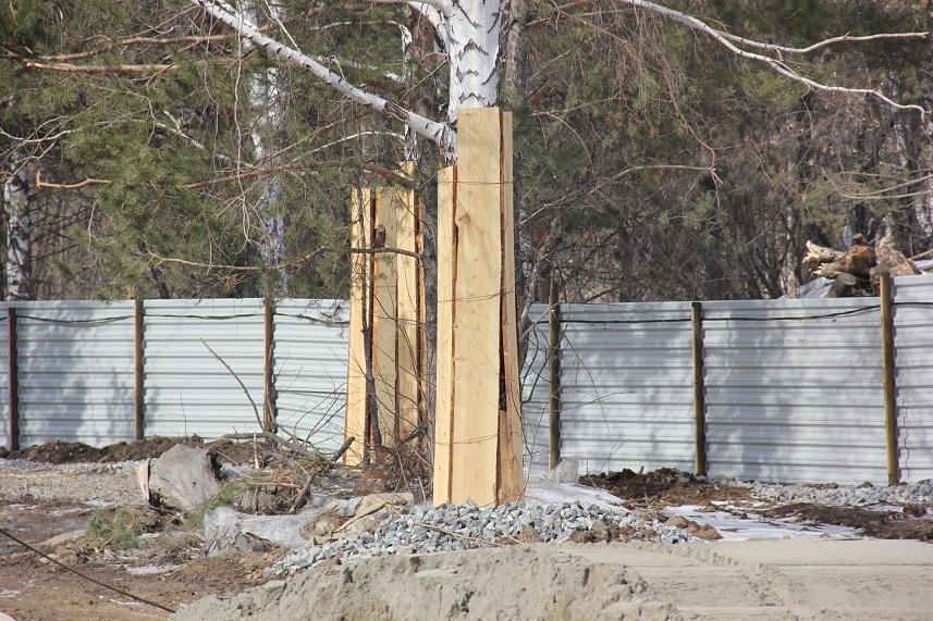Защита деревьев на стройплощадке в мо
